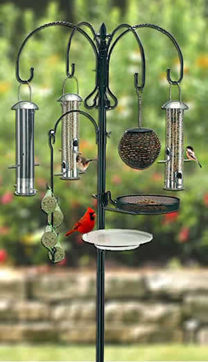 Win A Deluxe Wild Bird Feeding Station With Bird Feed And