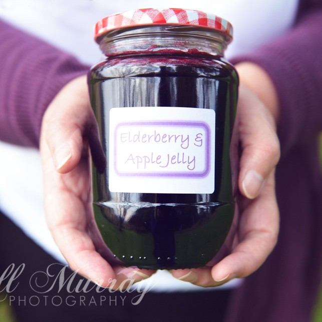 Elderberry and Apple Jelly Recipe
