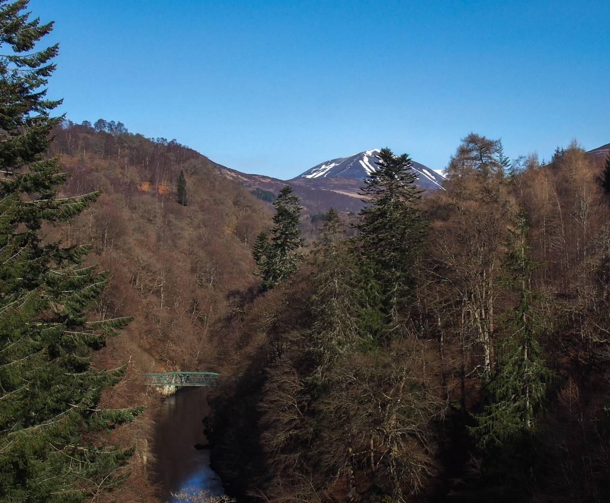 Bungee - View from the Bridge
