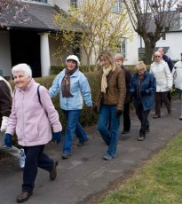 The wonderful Stride for Life walks can be found weekly throughout Perthshire and this Thursday walk is a great way to explore a bit of Invergowrie with other people in the area.
