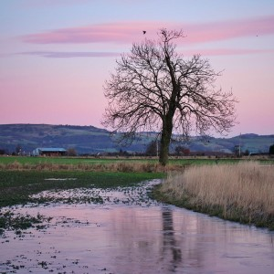 January Tones in Perthshire through the Lens of Female Photographers on instagram