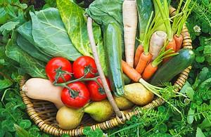 Vegetable Growing in Scotland