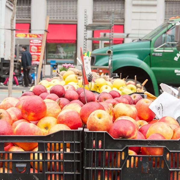 An abundance of fresh juicy apples in a range of colours, piled high in baskets at the New York market.