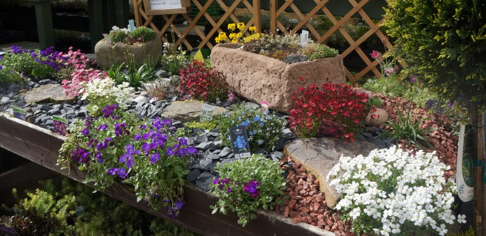GARDENS Alpine Beds