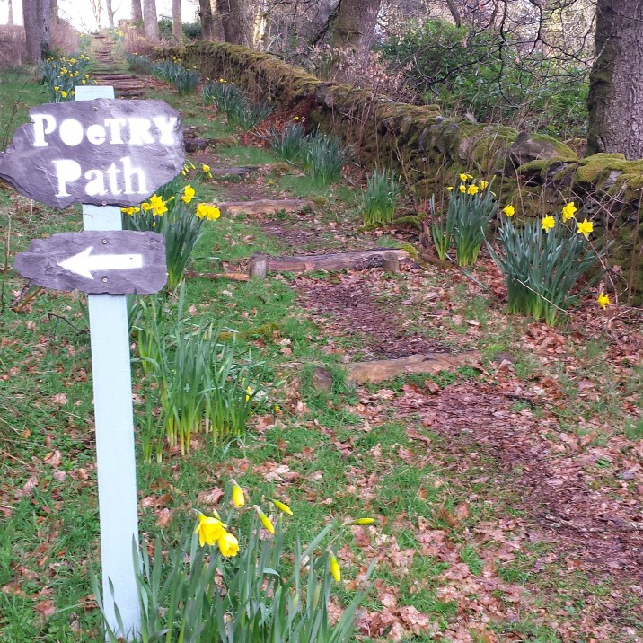 Make your start through the beautiful woodlands of Corbenic Poetry Path near Dunkeld in Perthshire.
