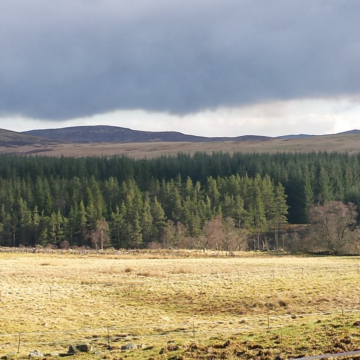 Wide open hillsides make for a stunning walk in Trochry, Perthshire.