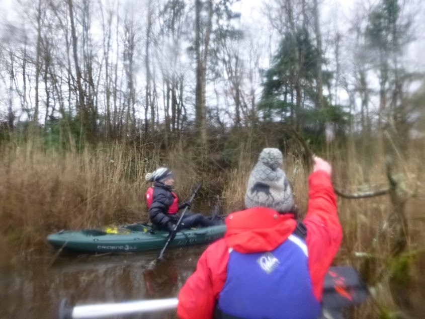 Outdoor Adventures Perthshire Wildlife canoe marsh