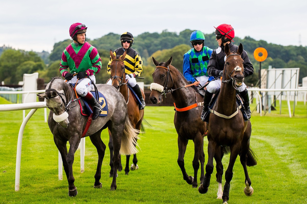 It's only the second year of the BRAW Saturday fixture at Perth Racecourse – you simply won't want to miss out!