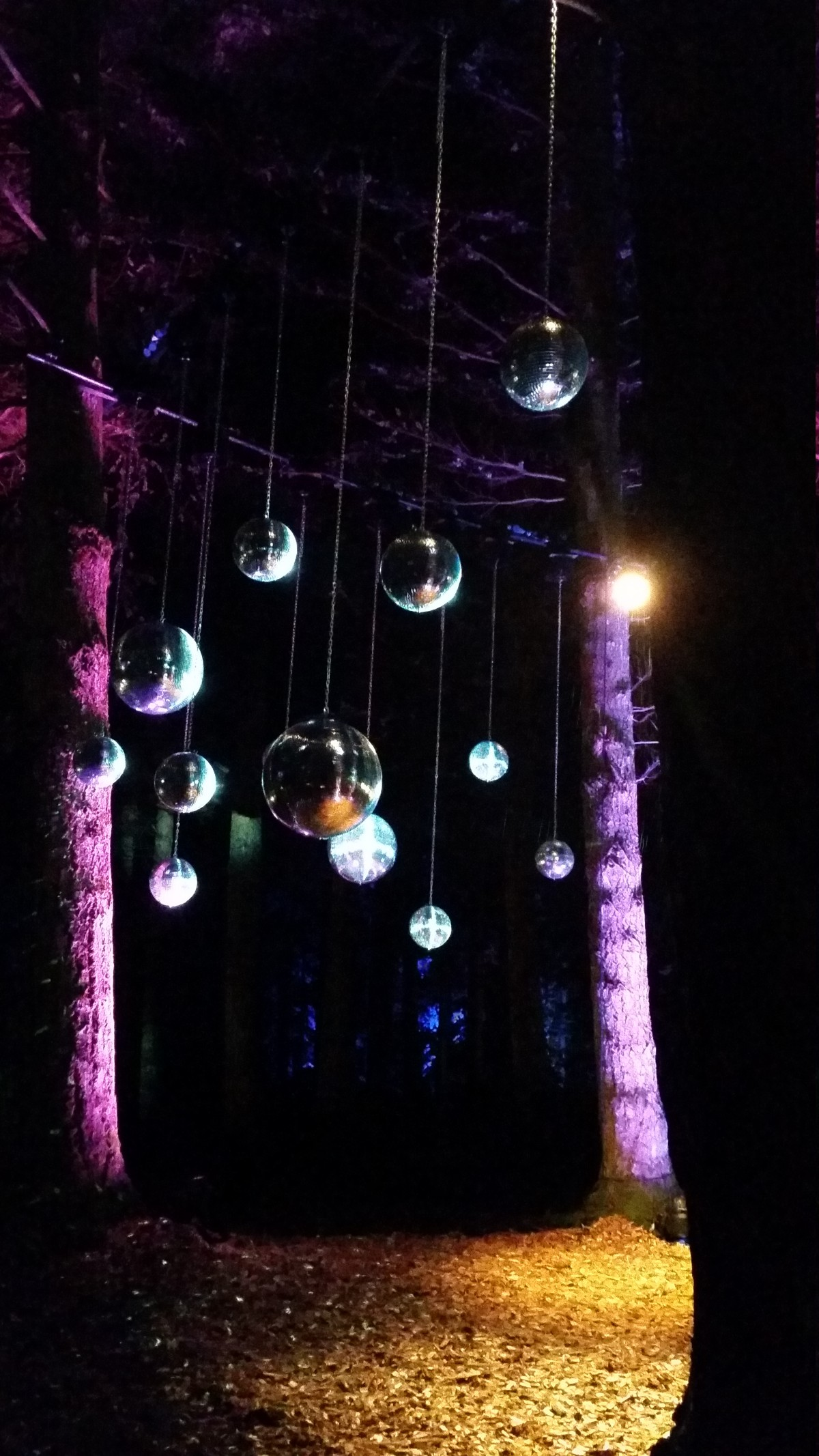Enchanted Forest 2016 disco balls