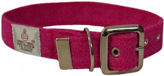Christmas Gift Guide Tay Vets collar