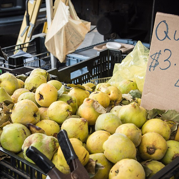 QUINCE JAM - Quince in Tub