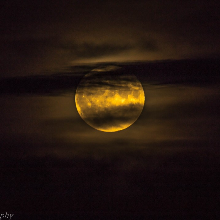 This picture of the Super Moon in Perthshire from Andrew Harvey shows the moon glowing gold with wisps of dark clouds.  You half expect to see a werewolf  howling at the side!