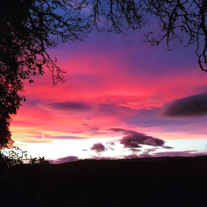 This picture is by Derek Browning and the tree acts as a frame to this beautifully coloured night sky over Perthshire.