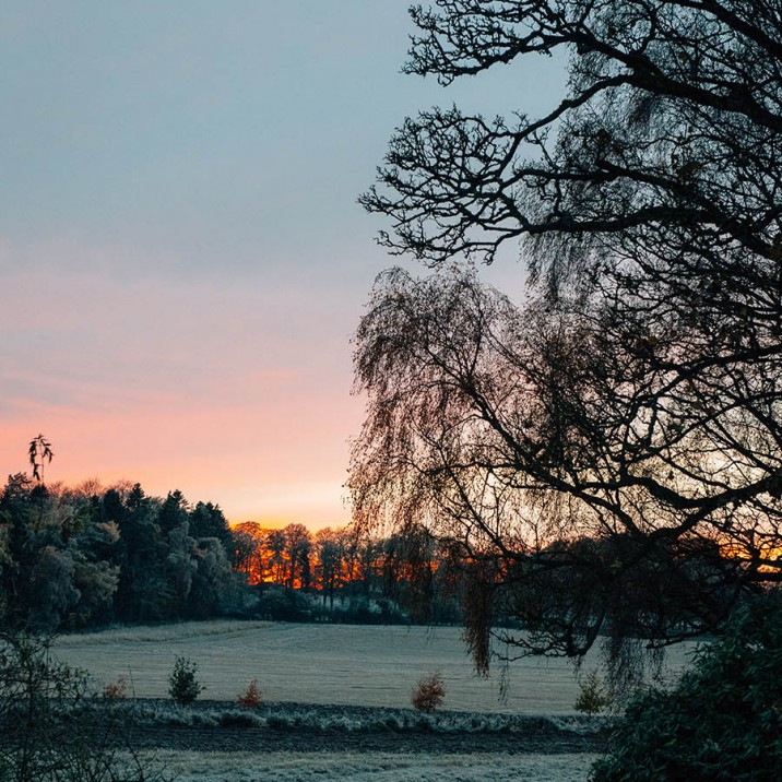 Beautiful orange glow of the sun setting in a frosty Perthshire field.