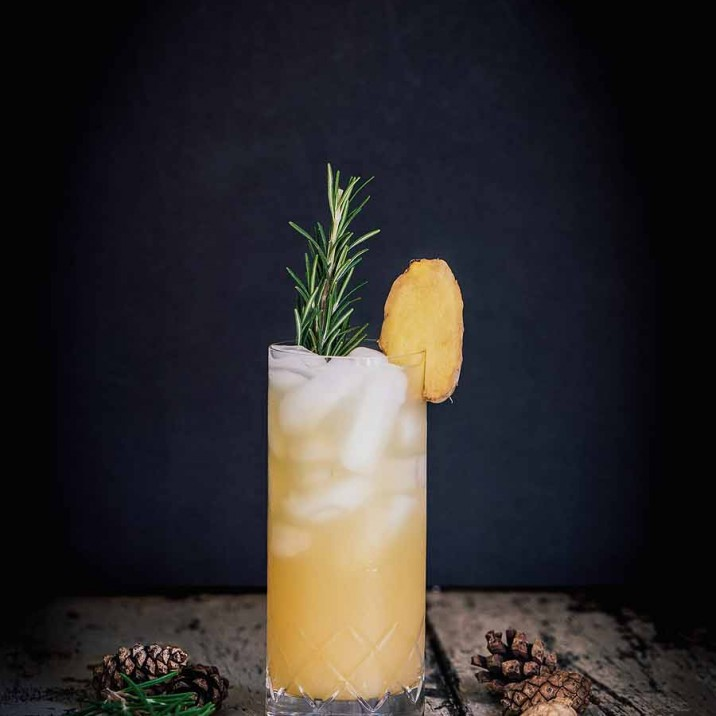 This Gin cocktail is the perfect Festive tipple served with a seasonal sprig of rosemary, perfect!