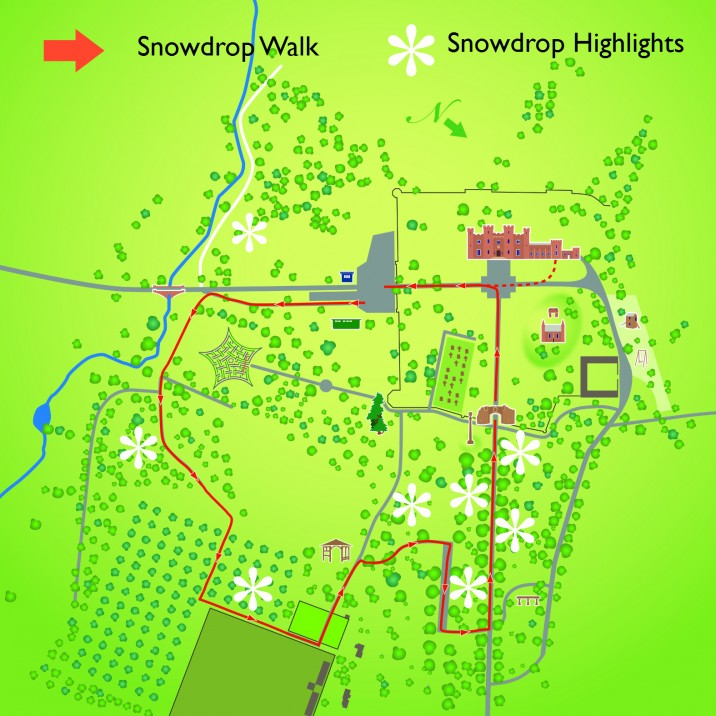 Scone Palace have a free map of where you can find all the best snowdrops in the grounds