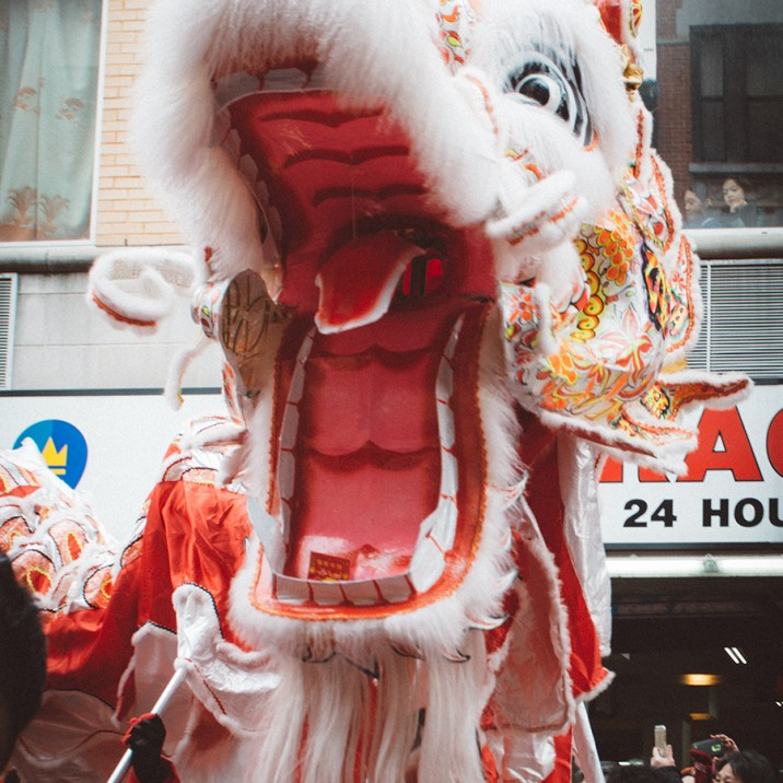The chinese dragons looked spectacular as part of the Chinese New year celebrations in New York.