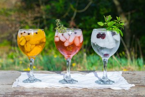 Finding your perfect gin at Perth's G&T fest