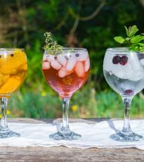A Gin Lovers Dream