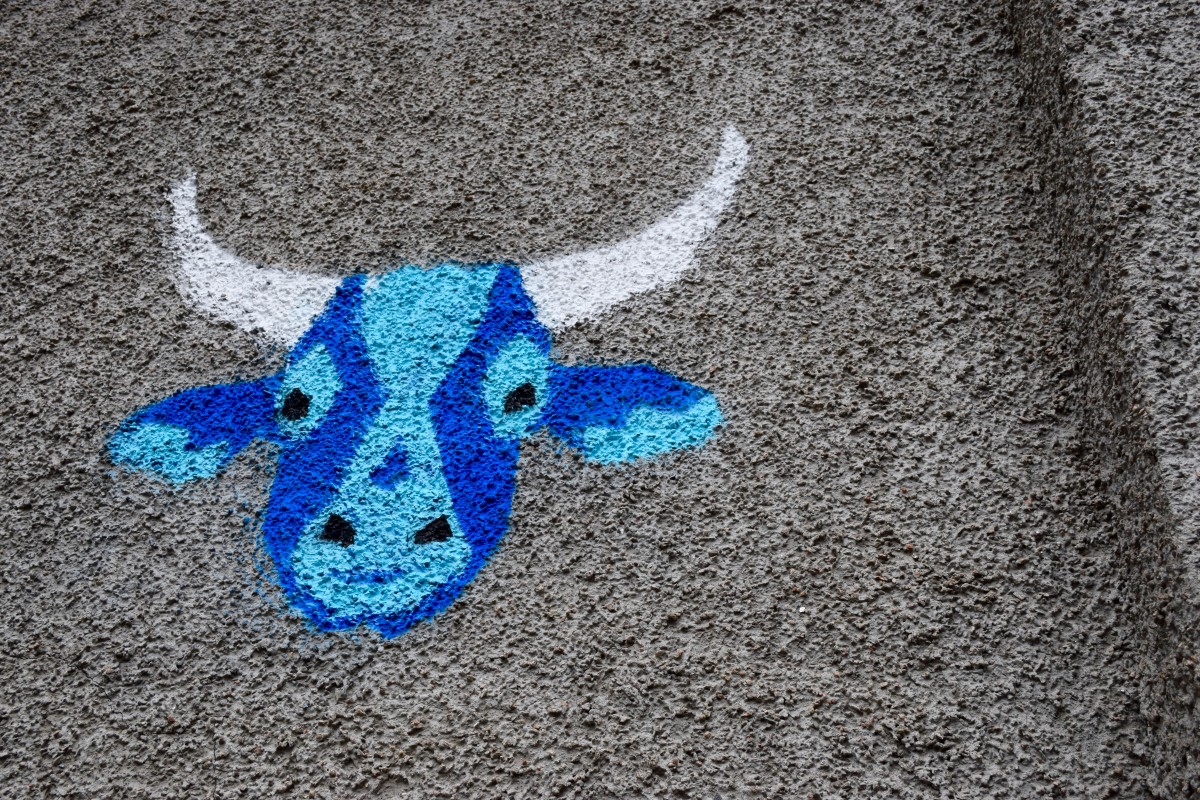 Vennels Guerilla Art Project Cow Vennel Blue Cow