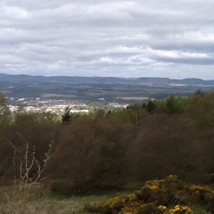 view of perth and trees