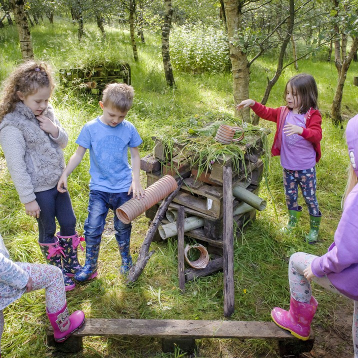 Go wild at RSPB Loch Leven