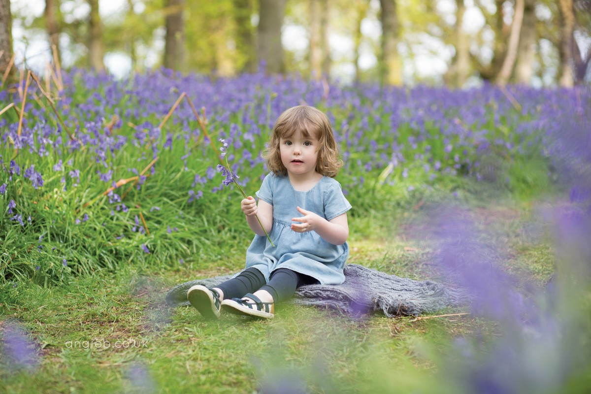 Taking a seat among the bluebells