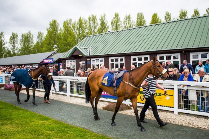 Perth Racecourse Sports Article Horse