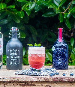 Raspberry and Blueberry Fizz Cocktail