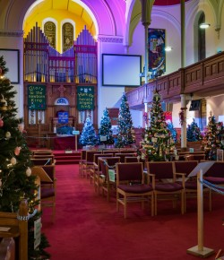A Christmas tree festival in Perth's North Church to help reflect on the true meaning of Christmas.