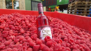 Since 1987 Cairn o' Mohr has been brewing up juicy-fruity, berry loaded, award-winning country wines.