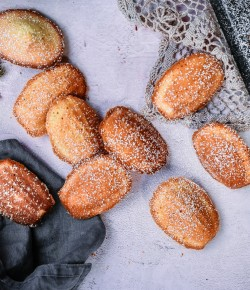 Rum Infused Madeleines