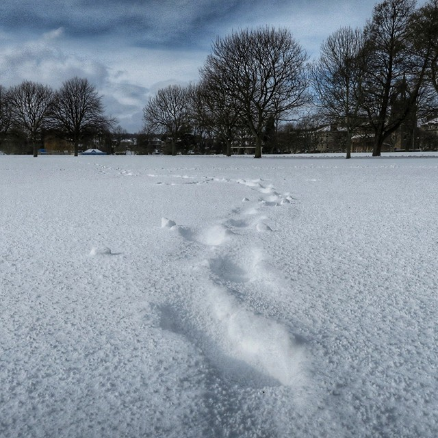 Footprints on a snow covered Inch.
