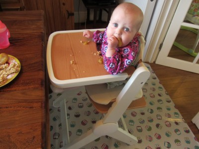 Baby Led Weaning for Beginners!