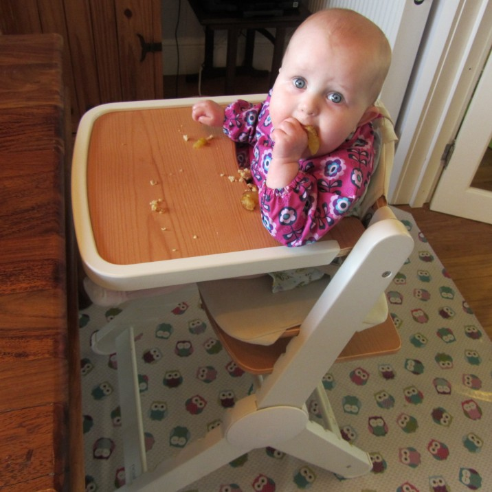 Baby Led Weaning  Beginners Tips Perth