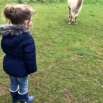 Libby meets her first Alpaca