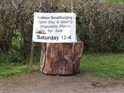 Southton Smallholding