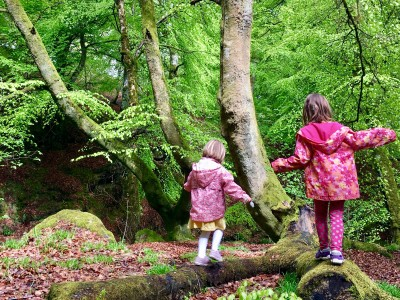 Natural Obstacle Courses at Wee Adventures