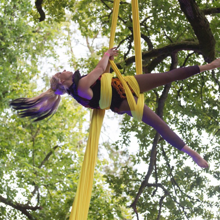 An aerial performance in the trees!