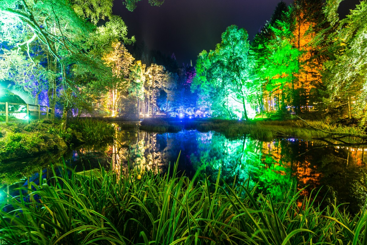 The Enchanted Forest returns for its 17th year in October ...