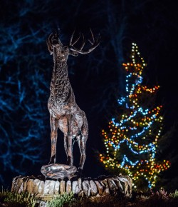 Enjoy Christmas Time in the winter wonderland of the Perthshire landscape at the Dunkeld House Hotel this festive period!