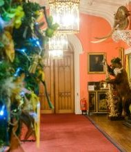 Visit Scone this Christmas when the Palace exterior is decked with twinkling lights, grand trees and even a glimmering Rudolf!