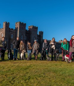 Scone Palace, one of Scotland's favourite visitor attractions, has invited dogs and their owners to an exclusive summer event where four-legged friend