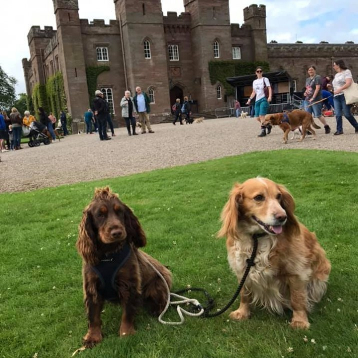 Orla and Goldie enjoyed their day at the Palace. 🤗💕
