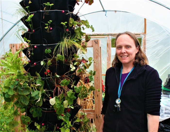 Perth Community Farm has invested in poly tunnels to make the most of their seasonal crop.