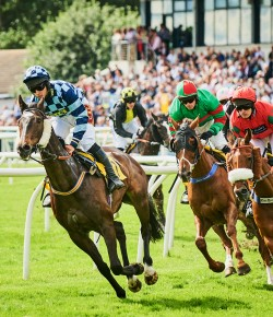 Glorious Finale at Perth Racecourse