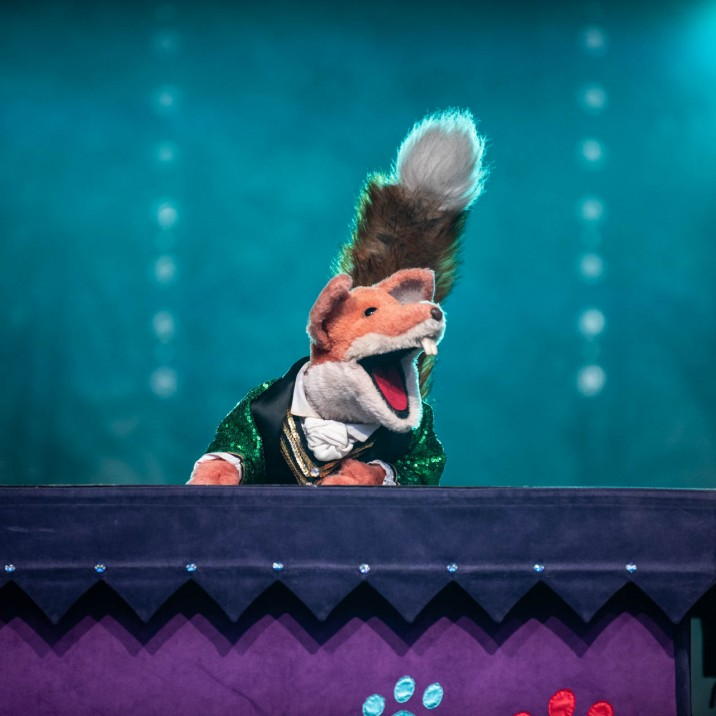 Basil Brush, Perth's favourite fox! Boom Boom!