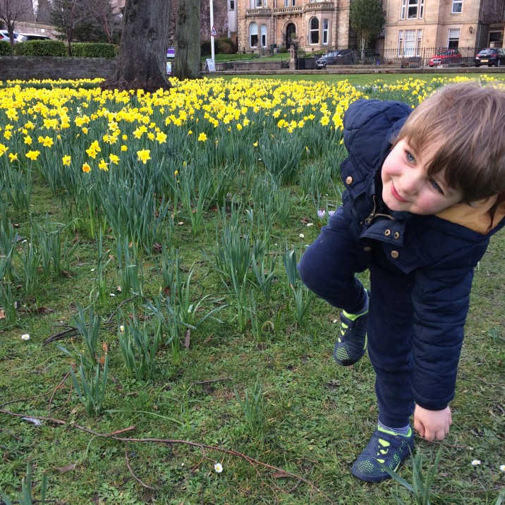 The truth about raising a small child - the highs, the lows and the downright embarrassing