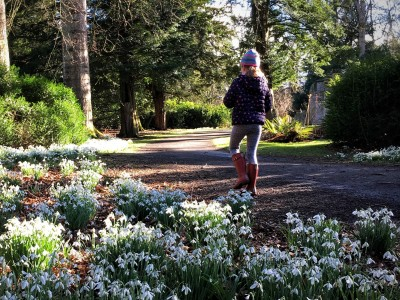 Using Snowdrops to Beat the Winter Blues