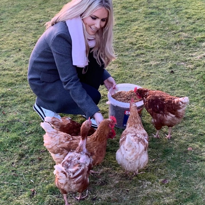 Gill Murray rehomes hens from Wing and a Prayer rescue charity
